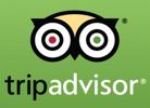trip advisor100